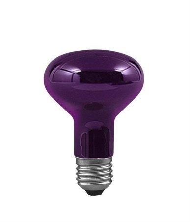 Glühbirne Reflektor R80 E27 75W Schwarzlicht