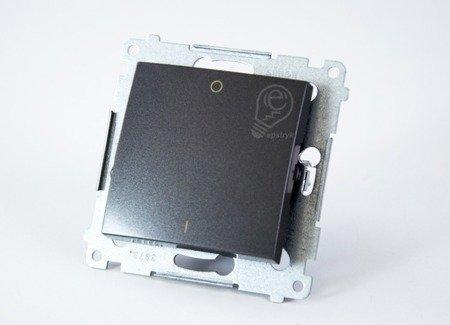 Schalter zweipolig mit Aufdruck und Anthrazit Kontakt Simon 54 Premium DW2.01/48